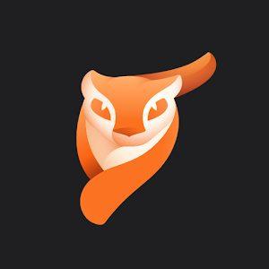Enlight Pixaloop MOD Apk (Unlimited Unlocked)
